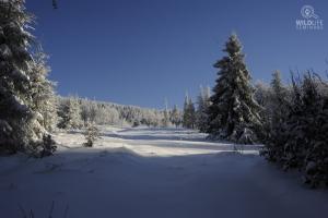 Location - zdjęcie6