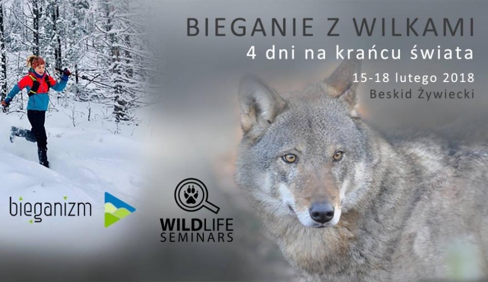 Bieganie z wilkami - ostatnie miejsca