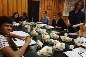 Large Carnivore Seminar - University of Wolverhampton - zdjęcie4